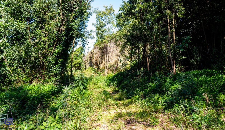 A06 Terreno urbano Arcozelo
