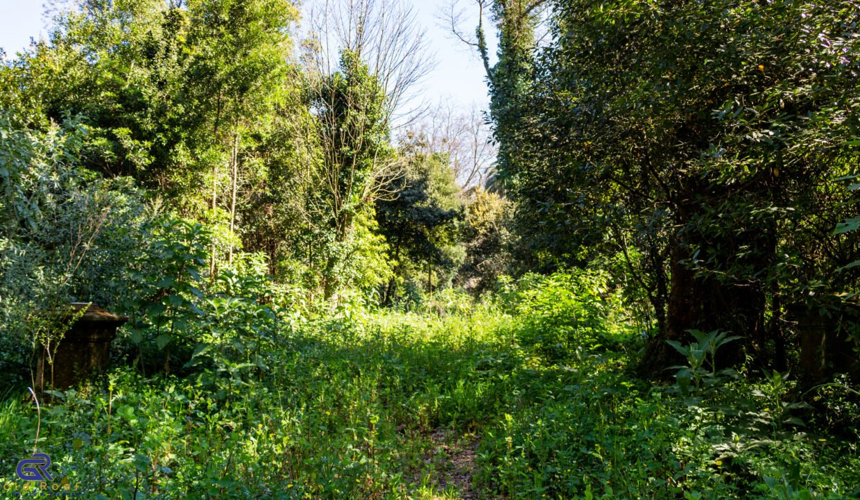 A08 Terreno urbano Arcozelo