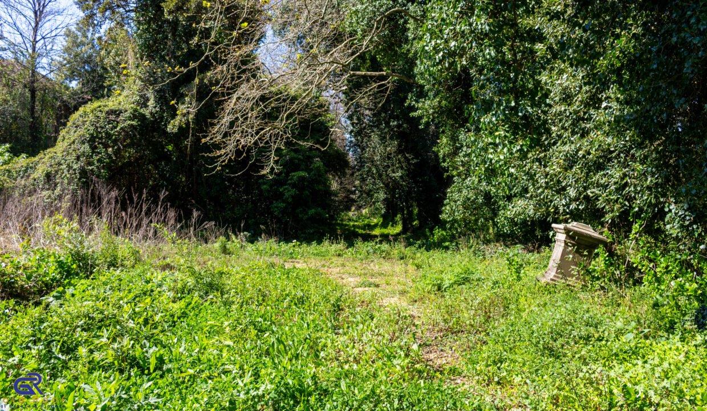 B05 Terreno urbano Arcozelo