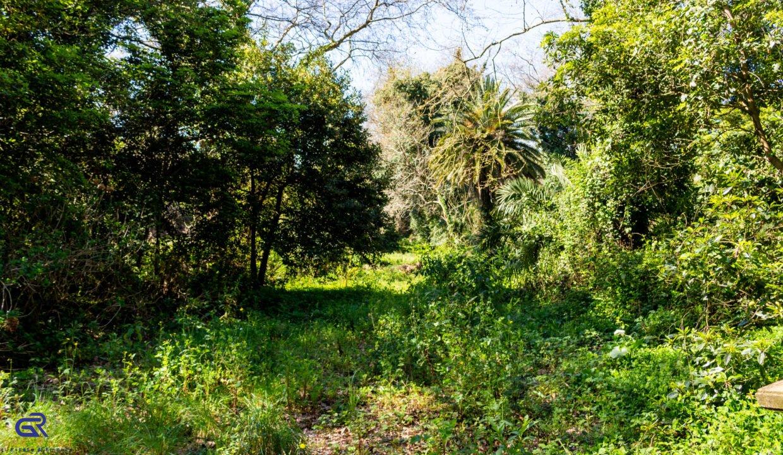 B07 Terreno urbano Arcozelo